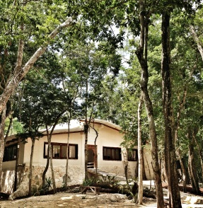 casa en la selva
