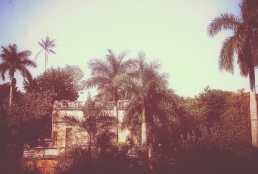 palmeras fente a casa colonial